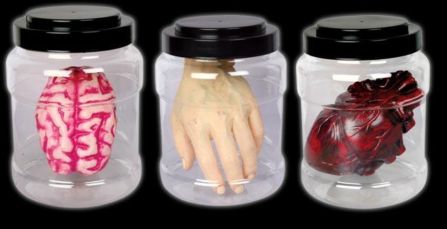 Laboratory Specimen - Brain