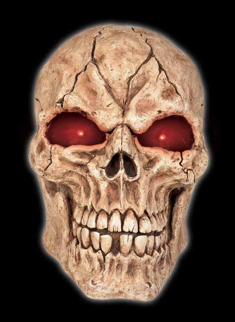 """Giant Skull 21"""" tall"""