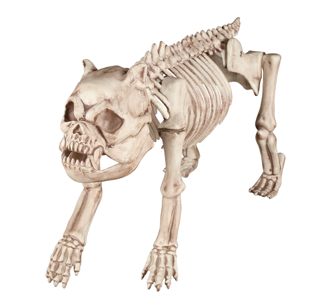 Crazy Bonez Skeleton Dog
