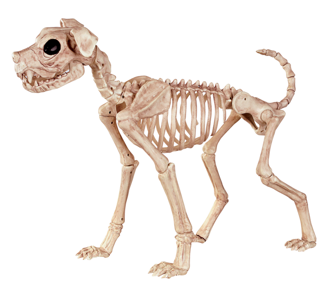 Crazy Bonez Skeleton Dog - Buster Bonez