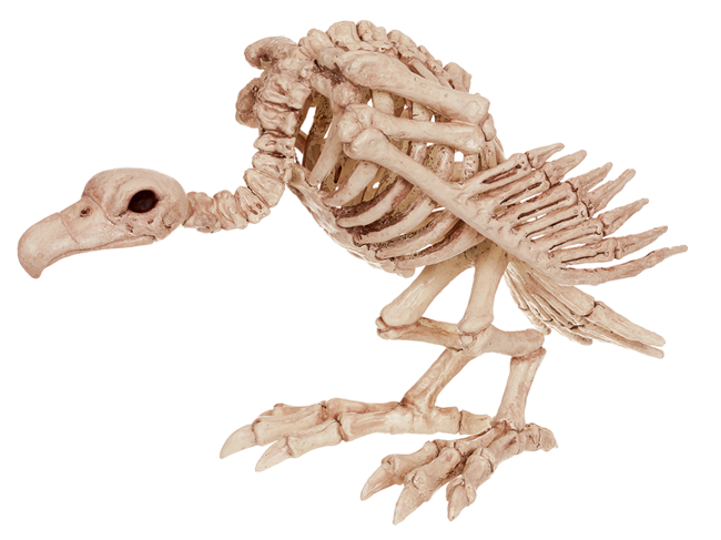 Crazy Bonez Skeleton Vulture