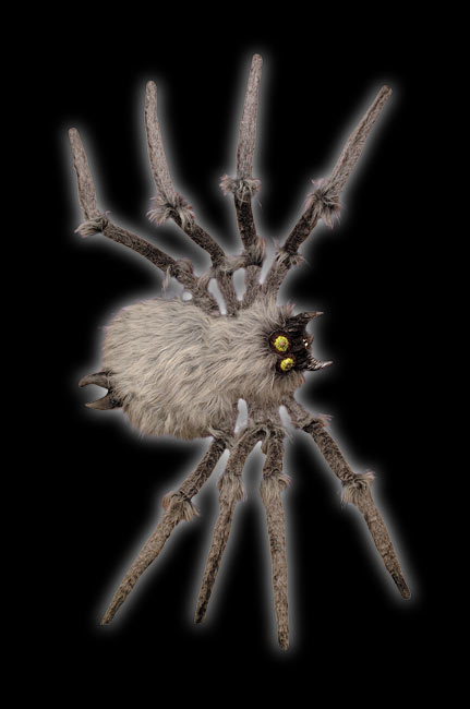 Large Gray Spider