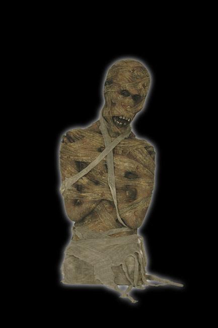 Mummy Torso