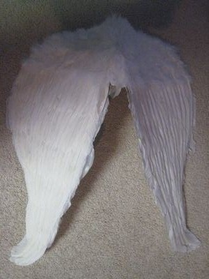 Realistic Wings